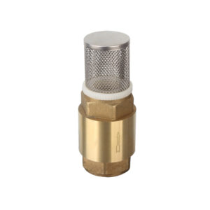 Foot Valve – with SS Mesh